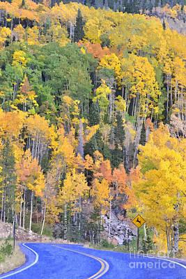 Turning Aspens On The Way To Bear Lake - Rocky Mountain National Park Estespark Colorado Print by Silvio Ligutti