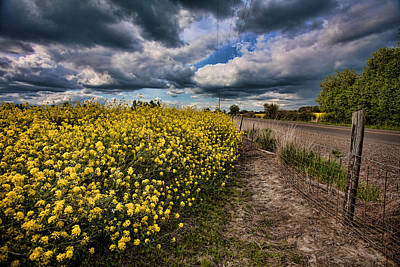Wooden Fence Post Photograph - Turnip Field by Bonnie Bruno