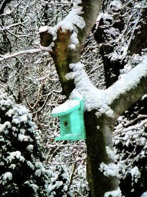 Snowstorm Photograph - Turquoise Birdhouse In Winter by Susan Savad