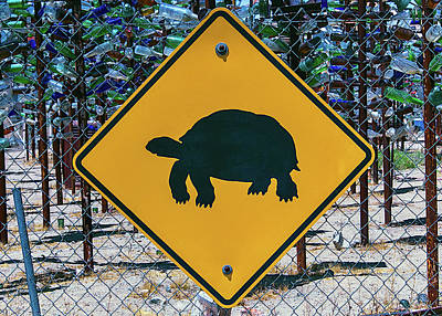 Turtle Crossing Sign Print by Garry Gay