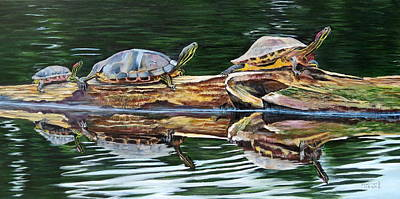Turtle Family Print by Marilyn  McNish