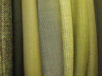 Tweeds Print by Anna Villarreal Garbis