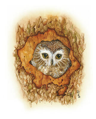 Twilight Owl Print by Donna Genovese