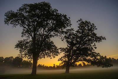 Dawn Photograph - Twilight Twin Oaks by Chris Bordeleau