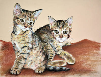 Domestic Short Hair Cat Painting - Twin Kittens by Christopher Reid