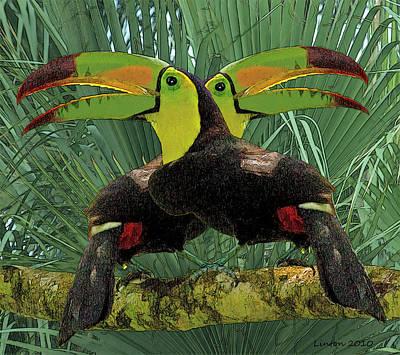 Toucan Digital Art - Twin Toucans by Larry Linton