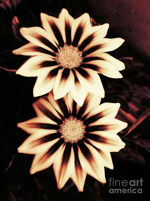 Flower Photograph - Twins by Erika H