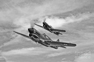 Nose Art Photograph - Two Curtiss P-40 Warhawks In Flight by Scott Germain