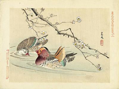 Drawing - Two Ducks by Matsumura Keibun