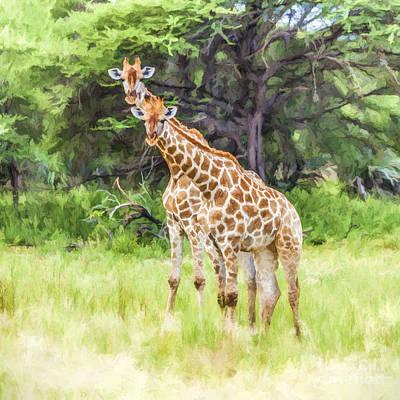 Giraffe Digital Art - Two Giraffes, Mahango Gr, Namibia by Liz Leyden