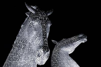 Kelpie Digital Art - Two Horses by Stephen Taylor