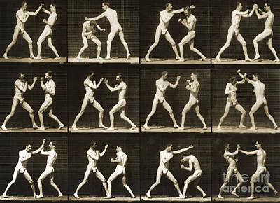Eadwerd Photograph - Two Men Boxing by Eadweard Muybridge