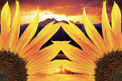 Two Sunflower Sunset Print by James BO  Insogna