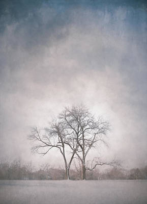 Impression Photograph - Two Trees by Scott Norris