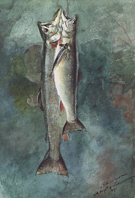 American Food Painting - Two Trout by Winslow Homer