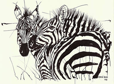 Two Zebra Black Ink Drawing 1 Print by Morne Fourie