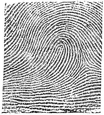 Typical Loop Pattern, 1900 Print by Science Source