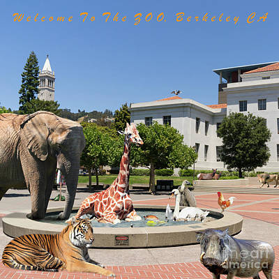 Uc Berkeley Welcomes You To The Zoo Please Do Not Feed The Animals Square And Text Print by Wingsdomain Art and Photography