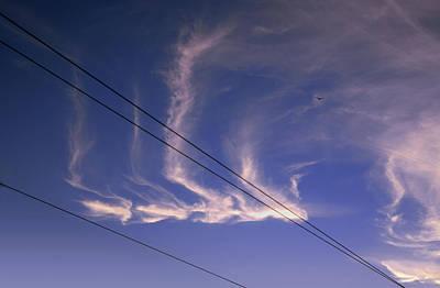 Photograph - Uncommon Trail by Daniel Furon