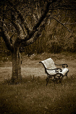 Under The Old Apple Tree Print by Frank Tschakert
