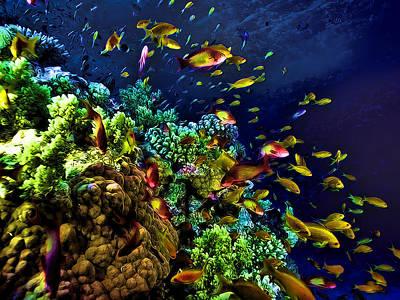Fish Underwater Painting - Underwater Tropical Fish Glow In The Dark Fantasy by Elaine Plesser