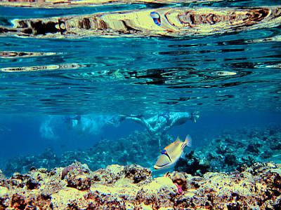 Underwater World. Beautiful Fish. Original by Andy Za