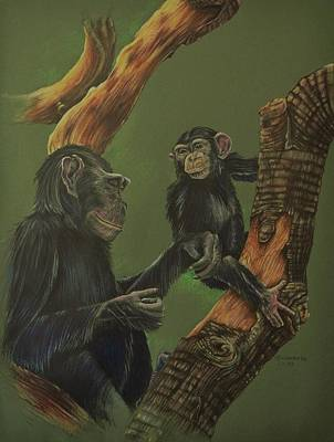 Chimpanzee Mixed Media - Undivided Attention by Elizabeth Cox