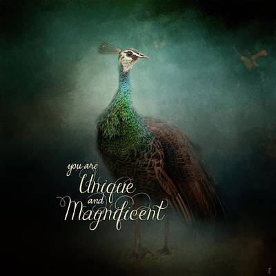 Peacock Photograph - Unique And Magnificent - Peacock Art by Jai Johnson