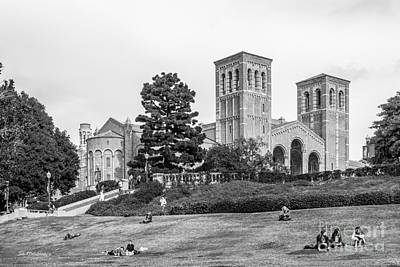 University Of California Photograph - University Of California Los Angeles Landscape by University Icons