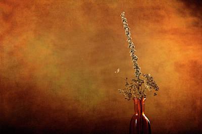 Photograph - Unseen by Randi Grace Nilsberg