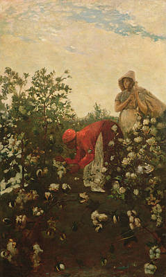 African-american Painting - Upland Cotton by Winslow Homer