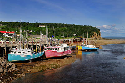 Owl Photograph - Upper Salmon River And Fishing Boats At Low Tide On The Bay Of F by Reimar Gaertner