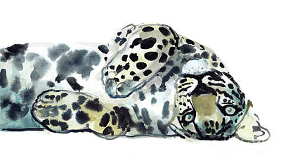 Leopard Drawing - Upside Down by Mark Adlington