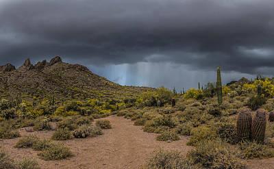 Arizona Photograph - Usery Showers by Chuck Brown