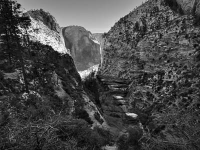 Tree Photograph - Utah - Zion National Park 004 Bw by Lance Vaughn