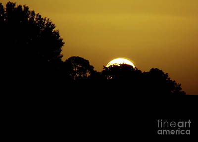 Photograph - Vacation Sunrise by D Hackett