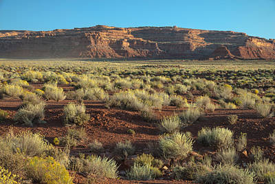 The Plateau Photograph - Valley Of The Gods by Joseph Smith