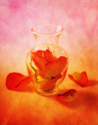 Glasses Photograph - Vase Of Roses Still Life by Tom Mc Nemar
