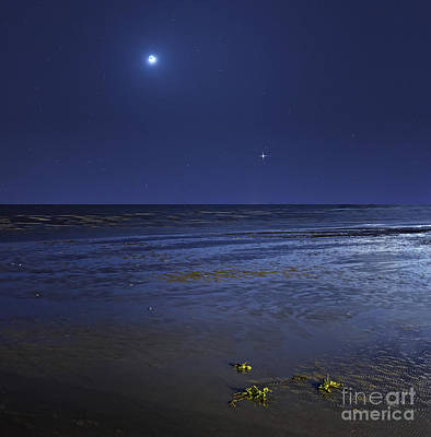 Photograph - Venus Shines Brightly by Luis Argerich