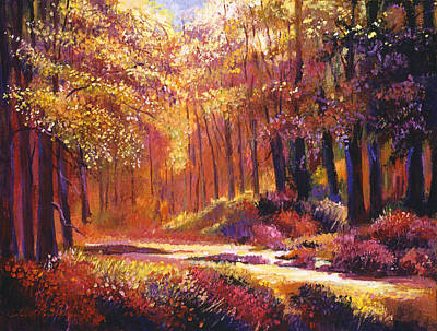 Vermont Paintbox Forest Original by David Lloyd Glover