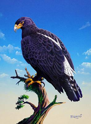 Verreaux's Eagle  Original by Anthony Mwangi