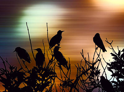 Starlings Digital Art - Vibrant Dawn by Sharon Lisa Clarke