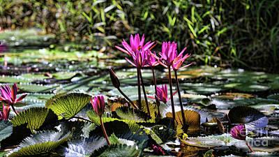 Binh Photograph - Vietnam Flowers  by Chuck Kuhn