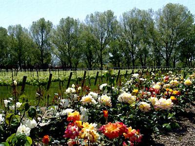 Vineyard Digital Art - View From Bridlewood Vineyards by Kurt Van Wagner