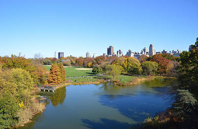 View From Central Park Ny Print by Trish Tritz