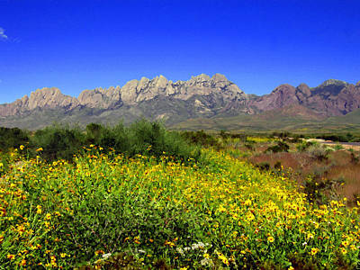 Las Cruces Digital Art - View From Dripping Springs Rd by Kurt Van Wagner