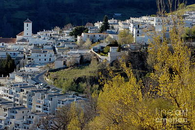 View Of Capileira Village In The Alpujarras Mountains In Andalusia Print by Sami Sarkis