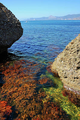 View Of The Sea From The Rocks Original by Yuri Hope