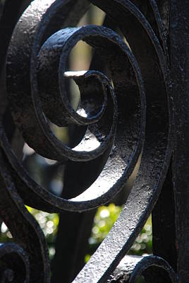 View Through The Iron Fence Print by Susanne Van Hulst