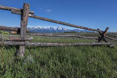 View Thru The Fence Original by Jon Glaser